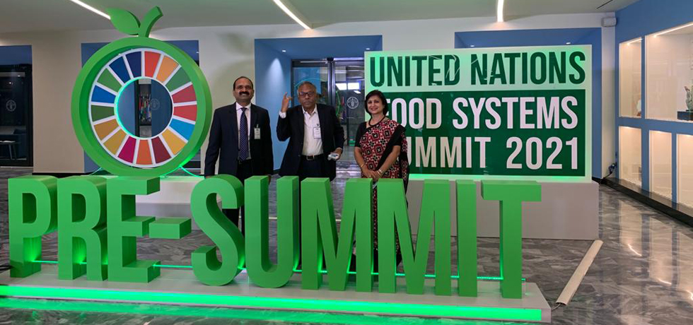 Ambassador's participation in the UN Food Systems Pre-Summit in FAO, 2021
